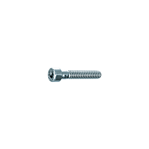 imbus-vijak-niska-glava